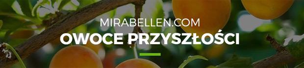 mirabellen.com